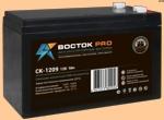 Аккумуляторная батарея к ибп (АКБ) CK-1209 (1234) ВОСТОК - фото