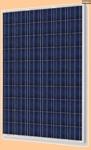 Солнечная батарея/панель SM 200-12 P - фото